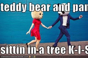 teddy bear and panda  sittin in a tree K-I-S-S-I-N-G!
