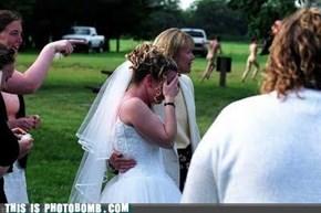 Sunday Bunday: The Wedding Only Had a Few Streaks in It... I Mean KINKS!
