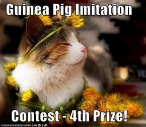 Guinea Pig Imitation  Contest - 4th Prize!