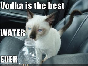 Vodka is the best WATER EVER
