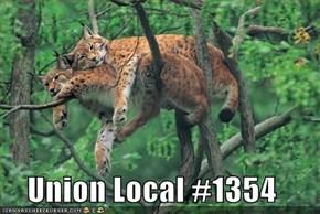 Union Local #1354