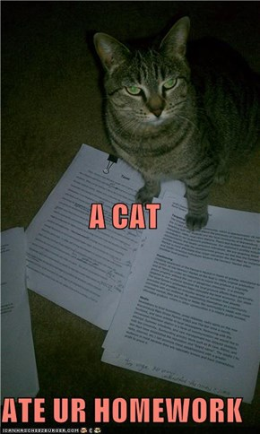 A CAT ATE UR HOMEWORK
