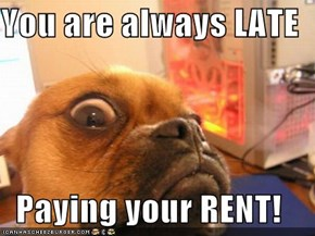 You are always LATE  Paying your RENT!