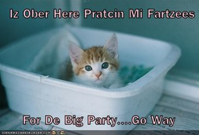 Iz Ober Here Pratcin Mi Fartzees          For De Big Party....Go Way