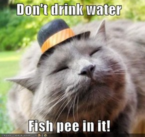 Don't drink water  Fish pee in it!