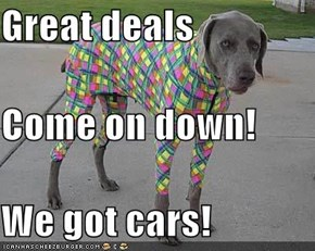 Great deals Come on down! We got cars!