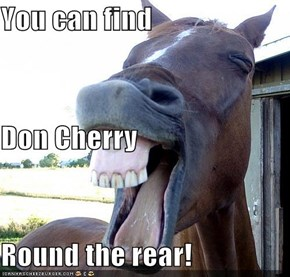 You can find Don Cherry Round the rear!