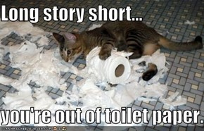 Long story short...  you're out of toilet paper.