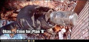 WTF was plan 'A'?
