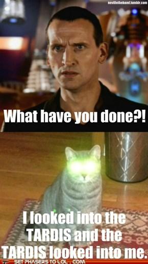 Bad Wolf...Er, Cat