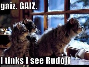 gaiz. GAIZ.  I tinks I see Rudolf