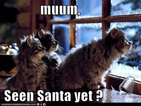 muum,       Seen Santa yet ?