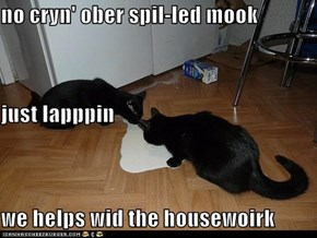 no cryn' ober spil-led mook just lapppin we helps wid the housewoirk