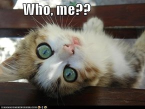 Who, me??