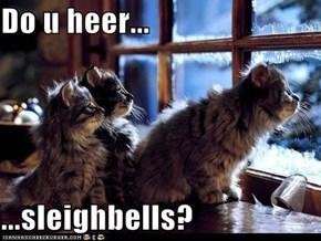 Do u heer...  ...sleighbells?