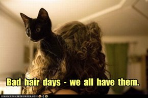 Bad  hair  days  -  we  all  have  them.
