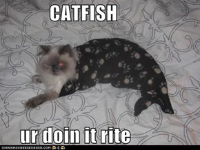 CATFISH  ur doin it rite
