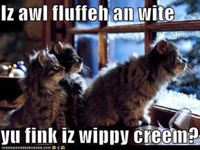 Iz awl fluffeh an wite  yu fink iz wippy creem?