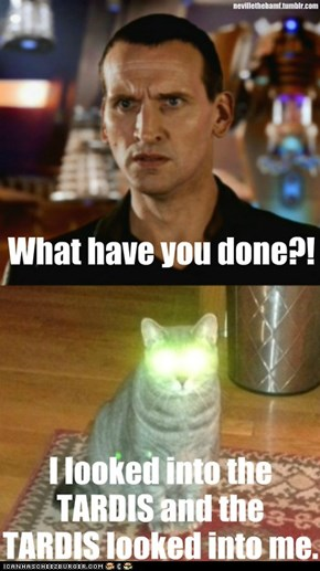 Bad Wolf Cat