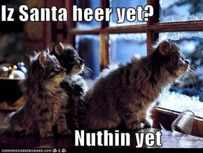 Iz Santa heer yet?  Nuthin yet