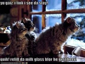 yu gaiz, i fink i see da slay!  quik! refill da milk glass bfor he getz heer!