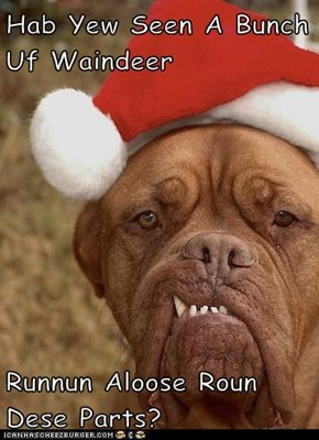 Hab Yew Seen A Bunch Uf Waindeer  Runnun Aloose Roun Dese Parts?