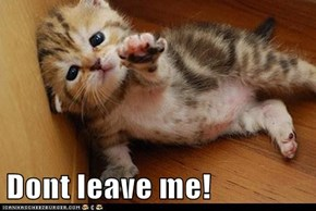 Dont leave me!