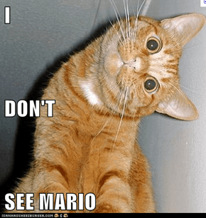 I DON'T SEE MARIO