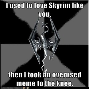 I used to love Skyrim like you,  then I took an overused meme to the knee.