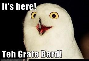 It's here!  Teh Grate Berd!