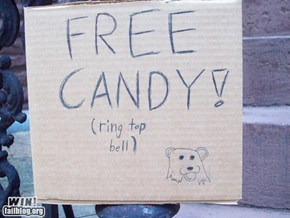 Halloween Sign Win