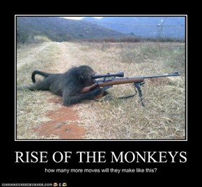 RISE OF THE MONKEYS