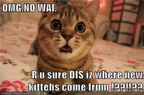 OMG.NO WAI.  R u sure DIS iz where new kittehs come frum !??!!??