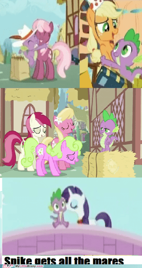 Spike gets all the mares!
