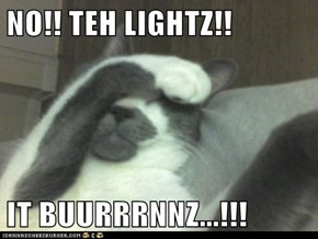 NO!! TEH LIGHTZ!!  IT BUURRRNNZ...!!!