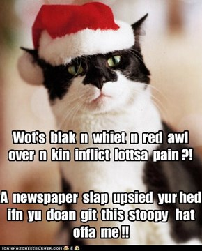 Where's your Christmas Spirit Kitteh?!