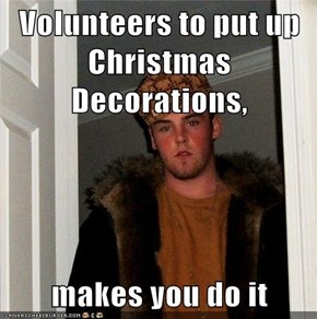 Volunteers to put up Christmas Decorations,   makes you do it