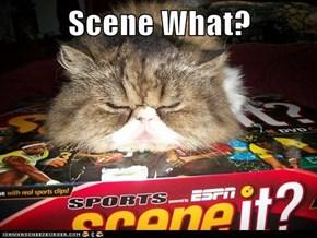 Scene What?
