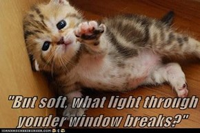 """But soft, what light through yonder window breaks?"""