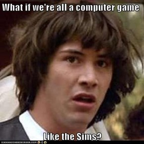 What if we're all a computer game  Like the Sims?