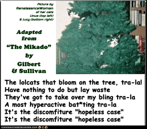 """The My-CATs-oh!"" (TTO ""The Mikado"" by Gilbert & Sullivan)"