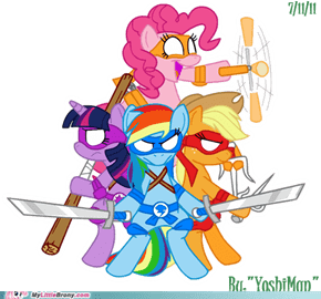 My Little Teenage Mutant Ninja Pony: Friendship is the way of the ninja