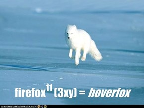 Arctic fox has good maths