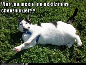 Wut you meen I no needz more cheezburger??