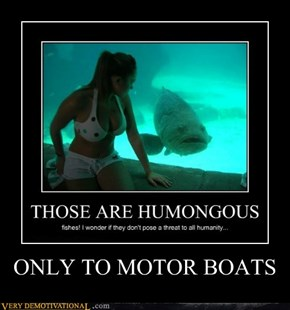 ONLY TO MOTOR BOATS