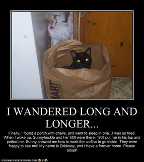 I WANDERED LONG AND LONGER...