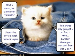 Squee Financial Purrtekshun: Nom Time