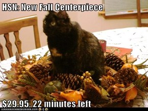 HSN: New Fall Centerpiece  $29.95, 22 minutes left