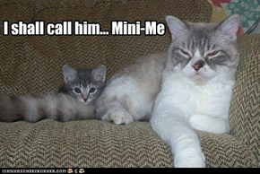 I shall call him... Mini-Me