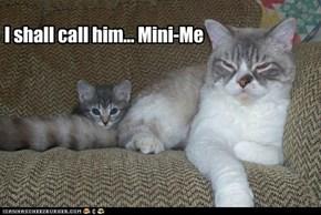 I shall call him... Mini-Me